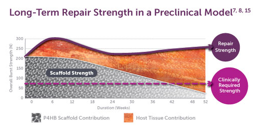 Long-Term Repair Graph - Strength of Surgical Scaffold in a Preclinical Model